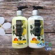 Combo dầu gội và xã Citrus Om Fountain ngăn rụng tóc